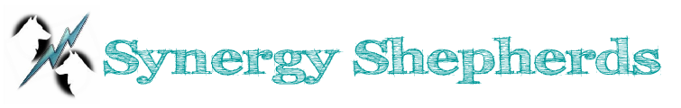 Synergy White Swiss Shepherds Logo